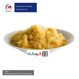 رزین کاتیونی کنفتک (Canftech)اسید قوی TC007